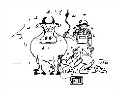 Drawing of a teat endoscopy on a cow